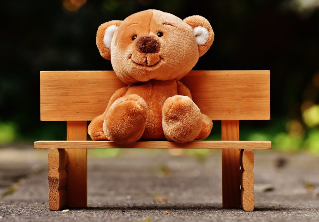 bear-bench-blur-207906